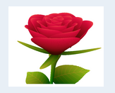 html5渲染的3D玫瑰花